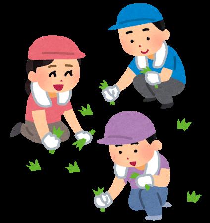 草むしりボランティア